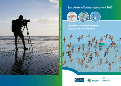 Rapport Flyway voor BirdLife International