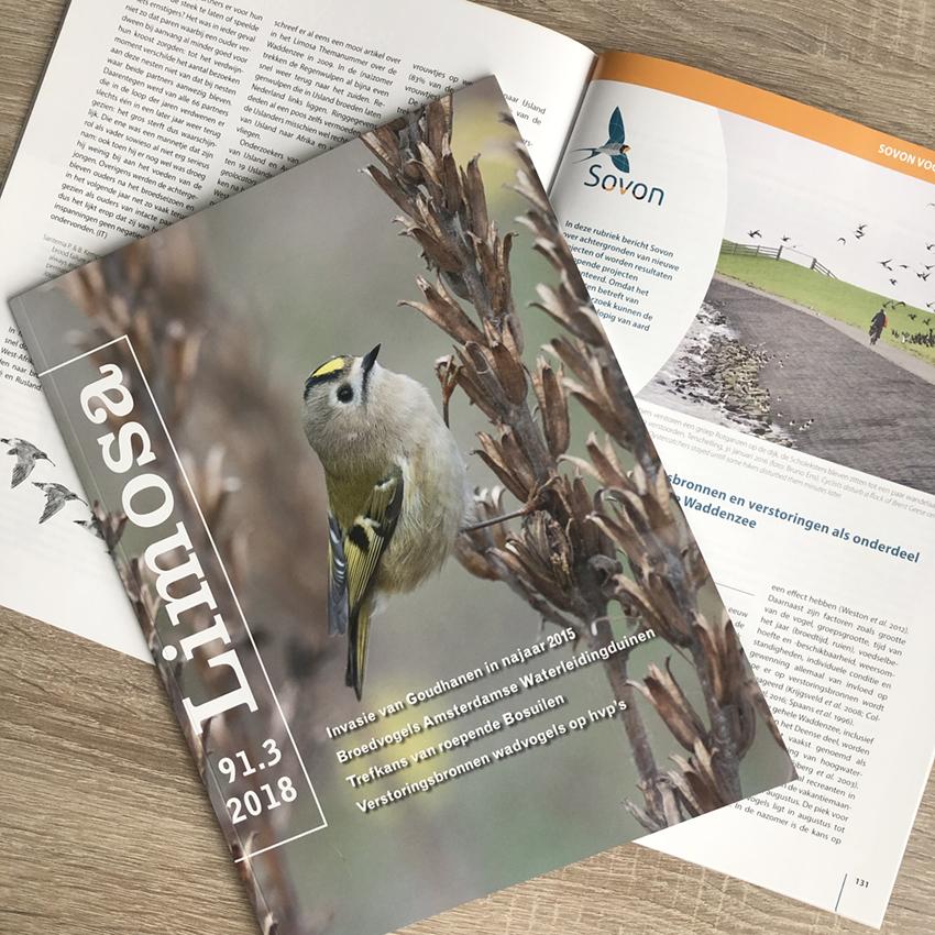 vogelmagazine Limosa